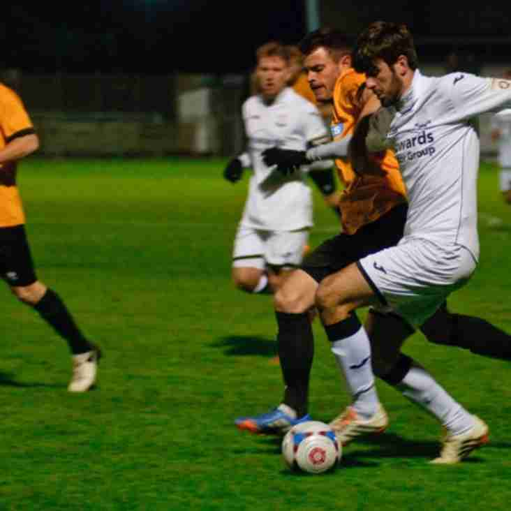 Seagulls Return For Mawford