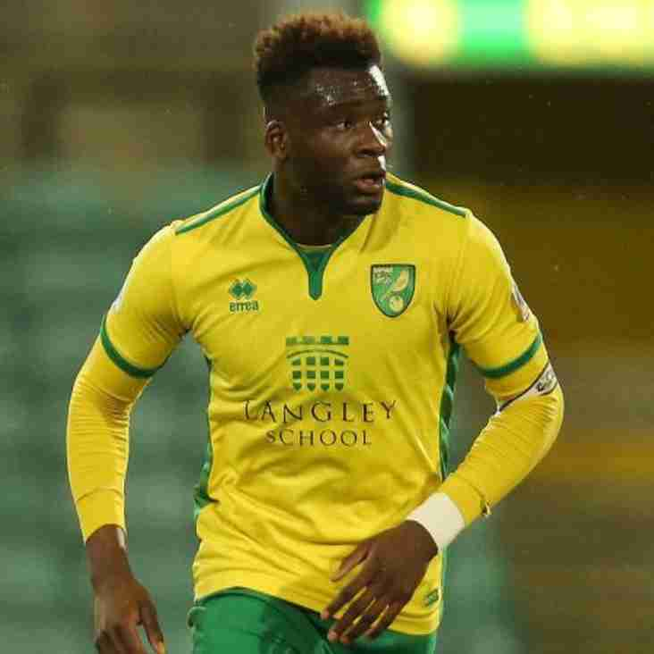 Young Norwich Defender Loaned to Torquay Until New Year