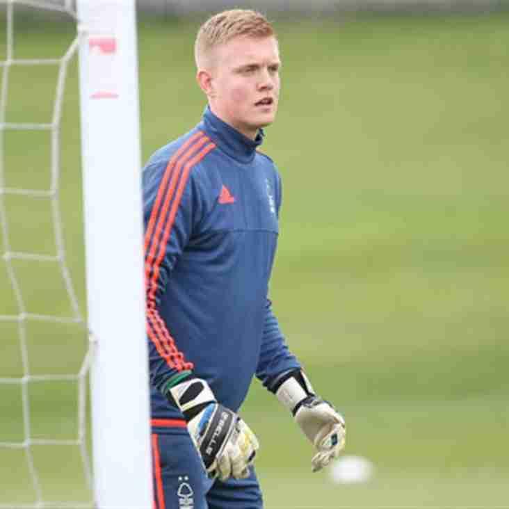 Ammies Take Swedish Under-21 International Keeper On Loan