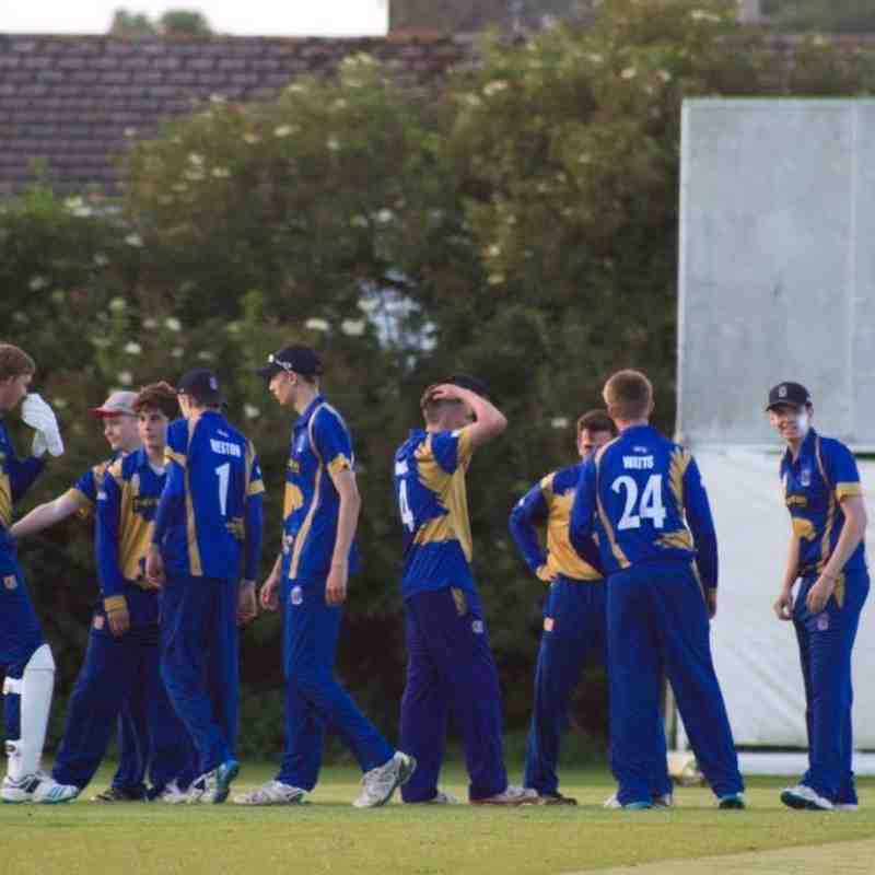 Frome Falcons celebrate a wicket in the field (Credit: Shaun Weston)