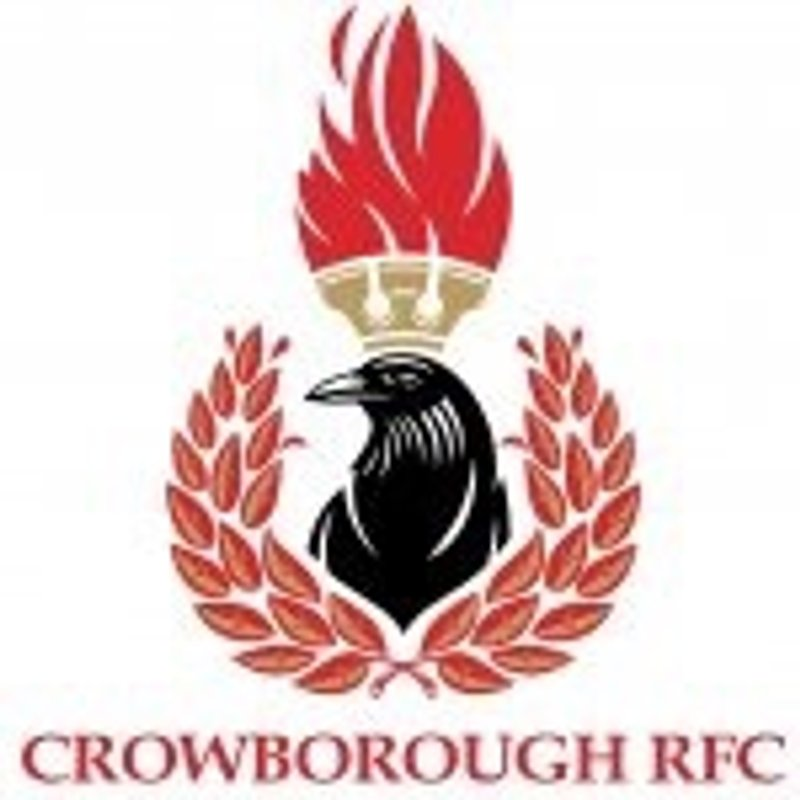 Crowborough Schools Tag Rugby Festival