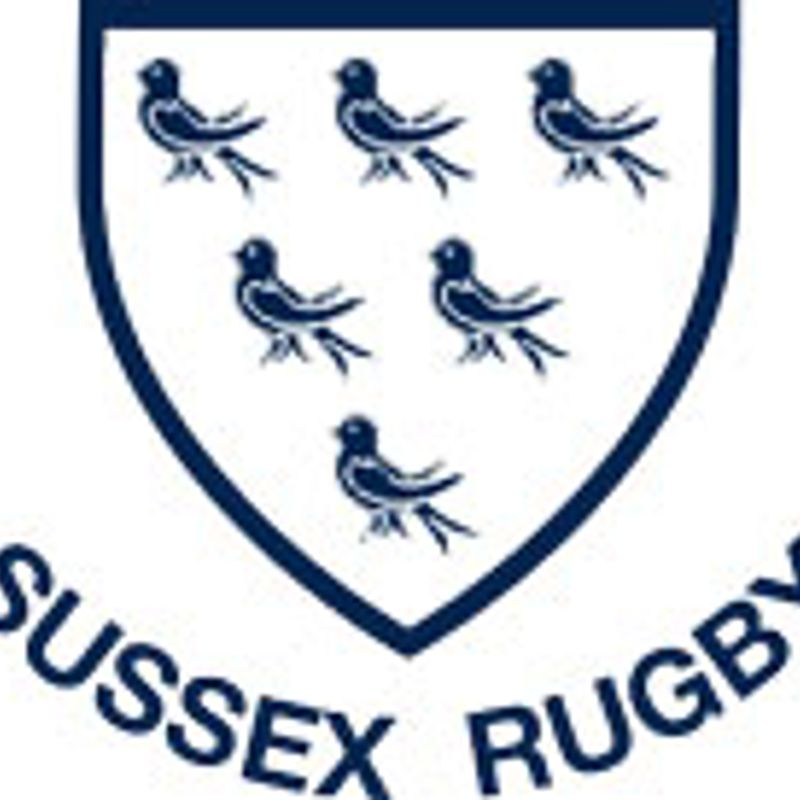 Sussex Colts Cup Final