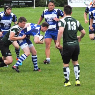 Nomads travel to bream
