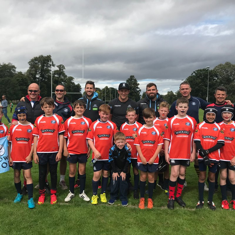 P7 play at Glasgow Warriors v Harlequins game