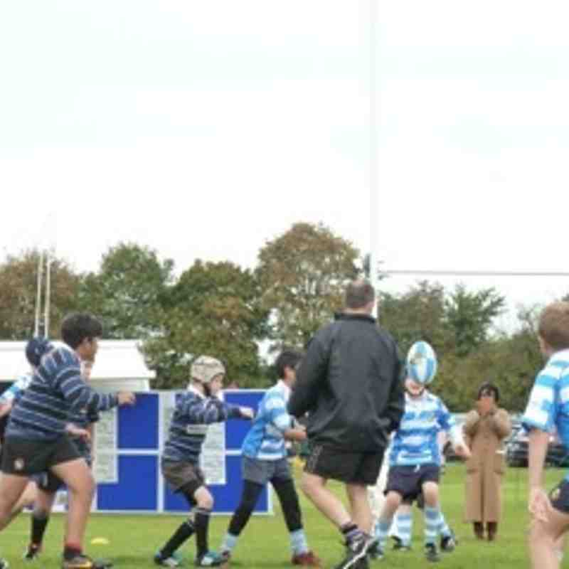 U11 at Warlingham Festival 12 Oct 2014
