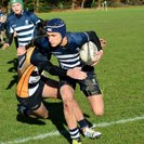 Harrow stung by Wasps in 9 try thriller.