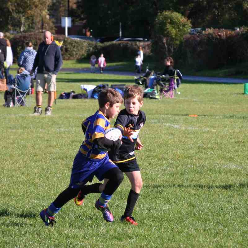 U9 v Nailsea 16th October 2016