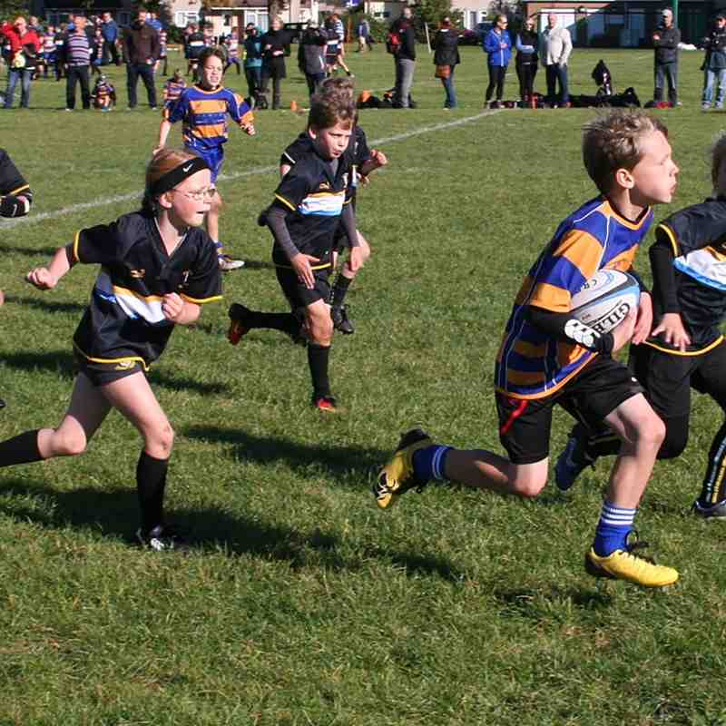 U9 v Nailsea & Backwell 16th November 2016