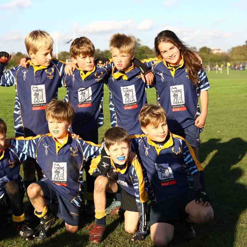 U9's C Festival at Rosslyn Park - 9th Nov 2014
