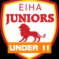 Slough Jets U11's beat Peterborough 10 - 3