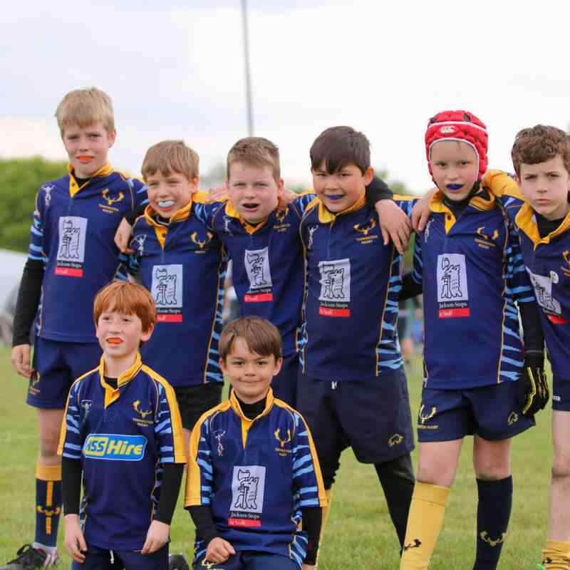 U9s Twickenham Festival 23 April 2017