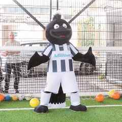 New Look Yorkie the Magpie Revealed