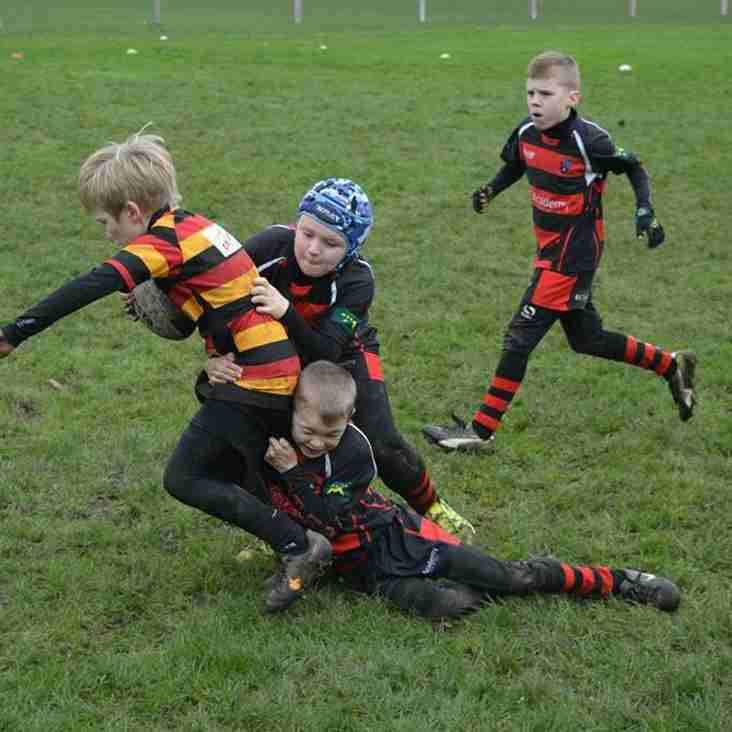 Awesome Wids U9s V Warrington RUFC U9s