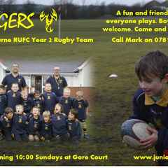 Stingers Year 2 Rugby Team Recruitment