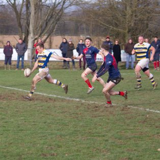 PJF fight back to draw in Cranleigh