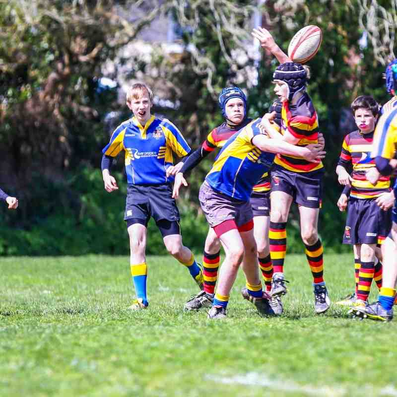 Under 13s v Saltash - 24th April 2016