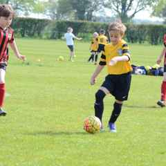 u9s friendly