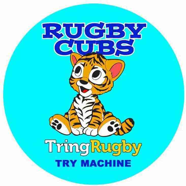 Rugby Cubs for ages 3 to 5 - How to Join in the fun