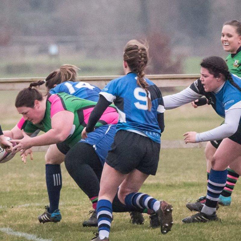 Westbury Ladies face Bath Ladies 2s in their final home game of the season