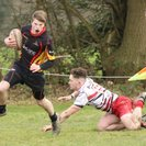 Battling Bees bettered by Bromsgrove