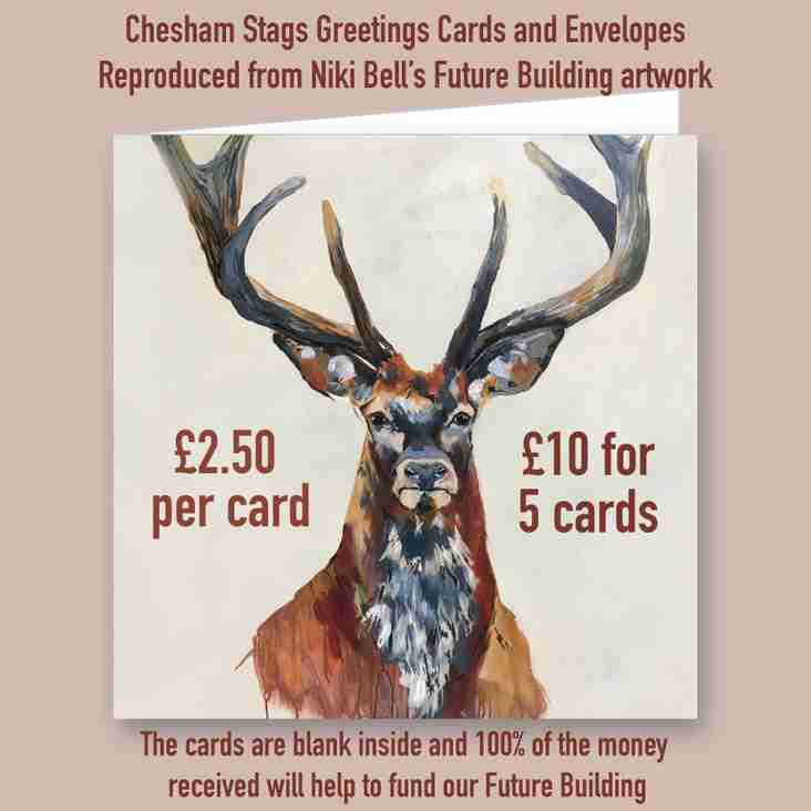 Buy your Stags Christmas cards now!
