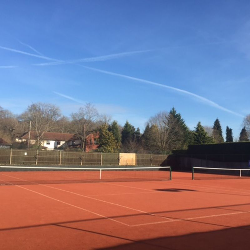 Tennis Survey
