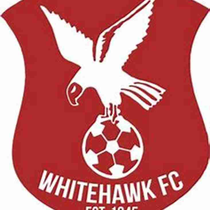 Bostik Supporters Predictions 18/19: Whitehawk