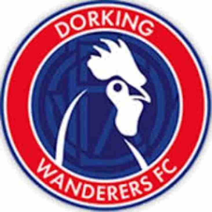 Bostik Supporters Predictions 18/19: Dorking Wanderers