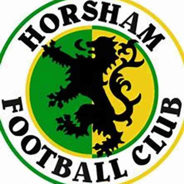 Bostik Supporters Predictions 18/19: Horsham