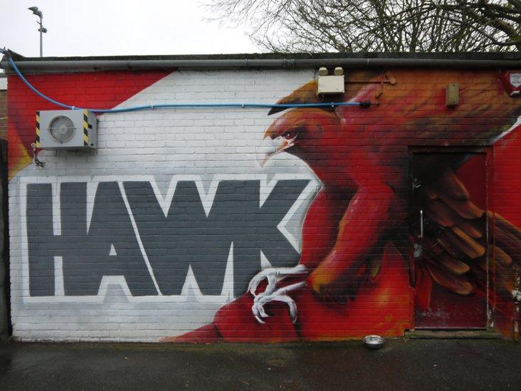 A very large Hawk