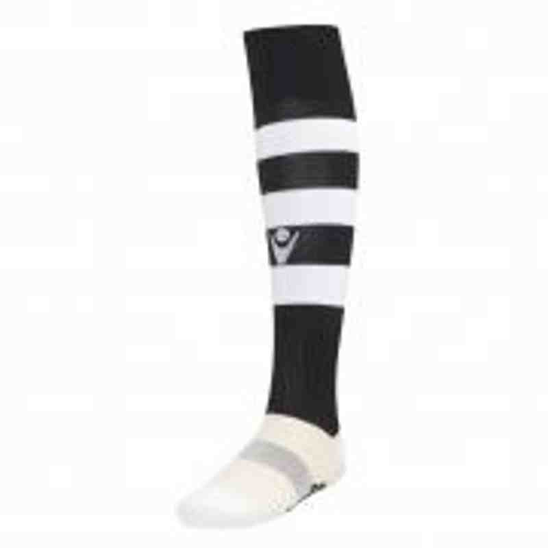 Panshanger Training Sock Senior Product ID: PFC06