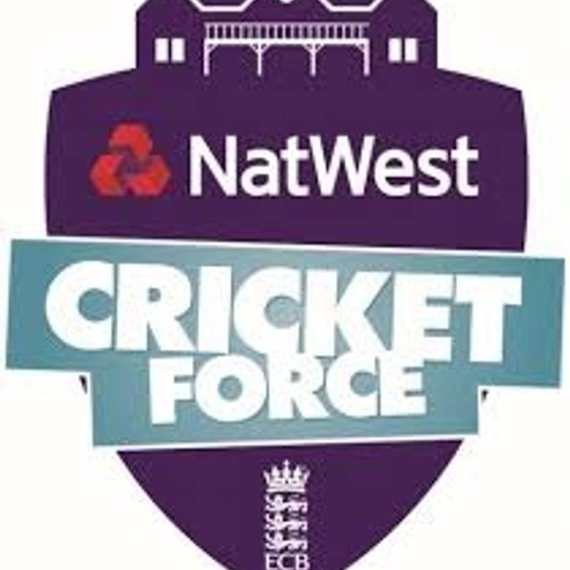 Nat West Cricket Force - Working Parties