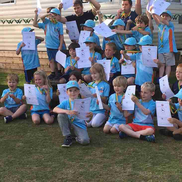 All Stars Cricket is a big success at Briz!