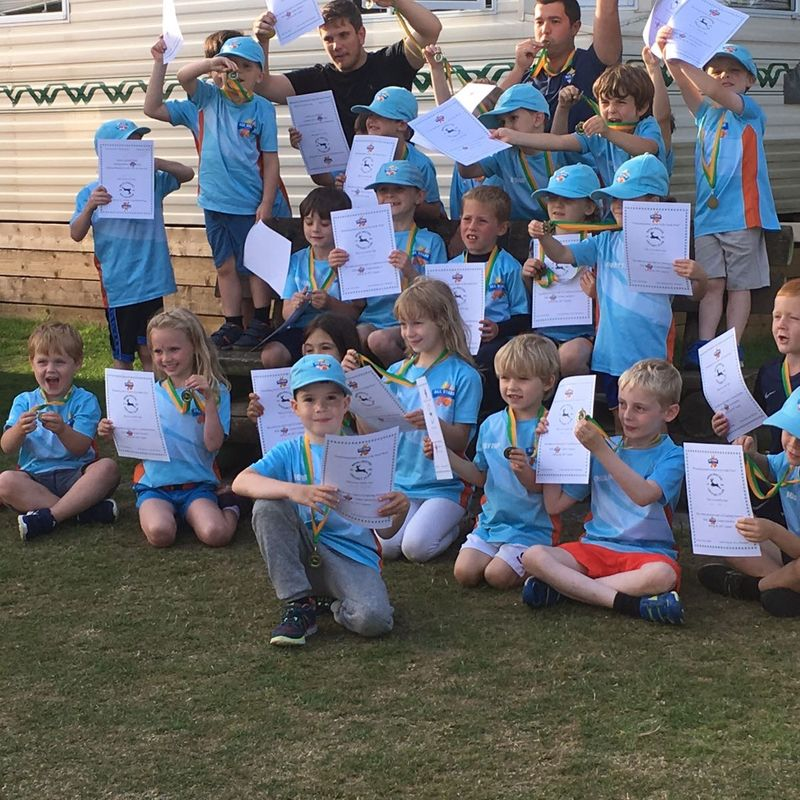 All Stars Cricket is a big success at Briz!
