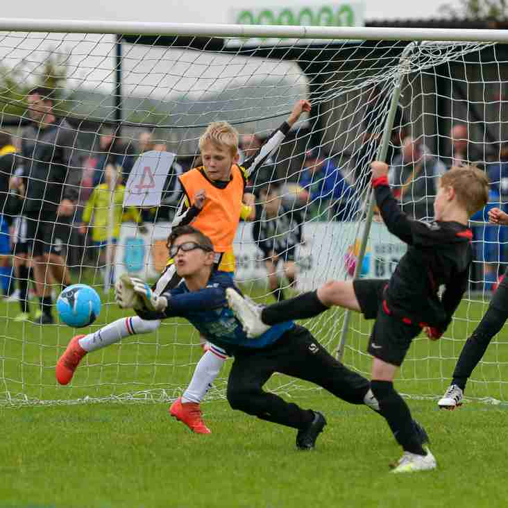 Youth tournament in focus