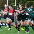 Brace of tries for George Horne in Scotland win