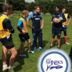 Sale Sharks Rugby Camp for U9-U12
