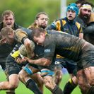 Vikings win close battle over tough Holbrook
