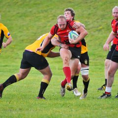 Sarries in action