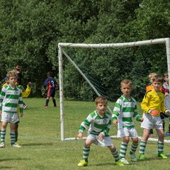 4-7-15 - Priory Tournament - U7's Green v Whites
