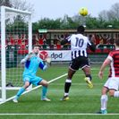 Bedfont Sports 3 Hanwell Town 3