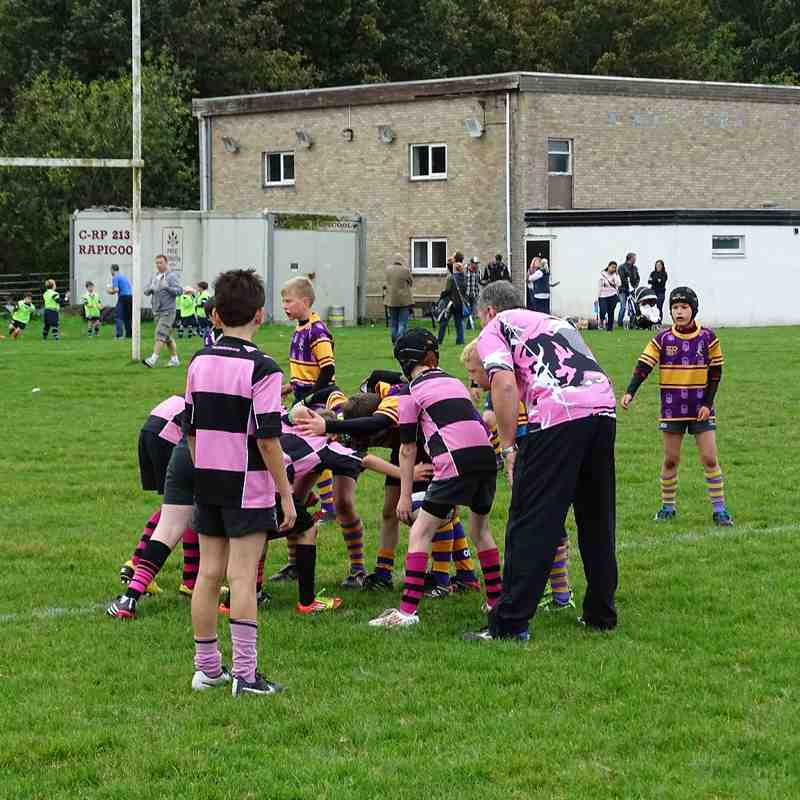 Ayr Mini Rugby Tournament