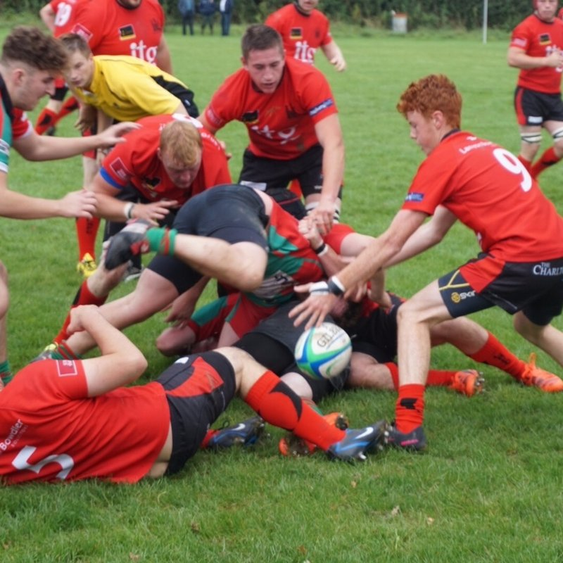 Ludlow 1st XV are at home to Harborne on Saturday KO 3pm