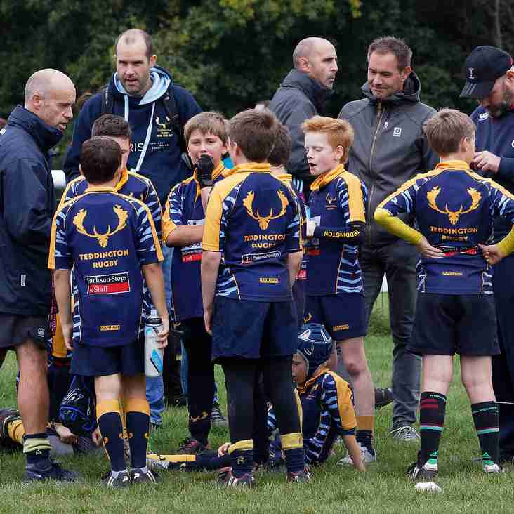 U11 News for 26th November