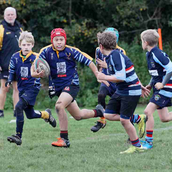 U11 News for 29th October
