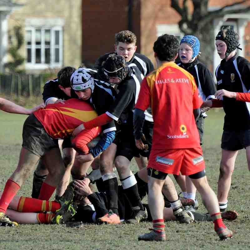 CRFC U15B's v Cambridge 08/02/2015