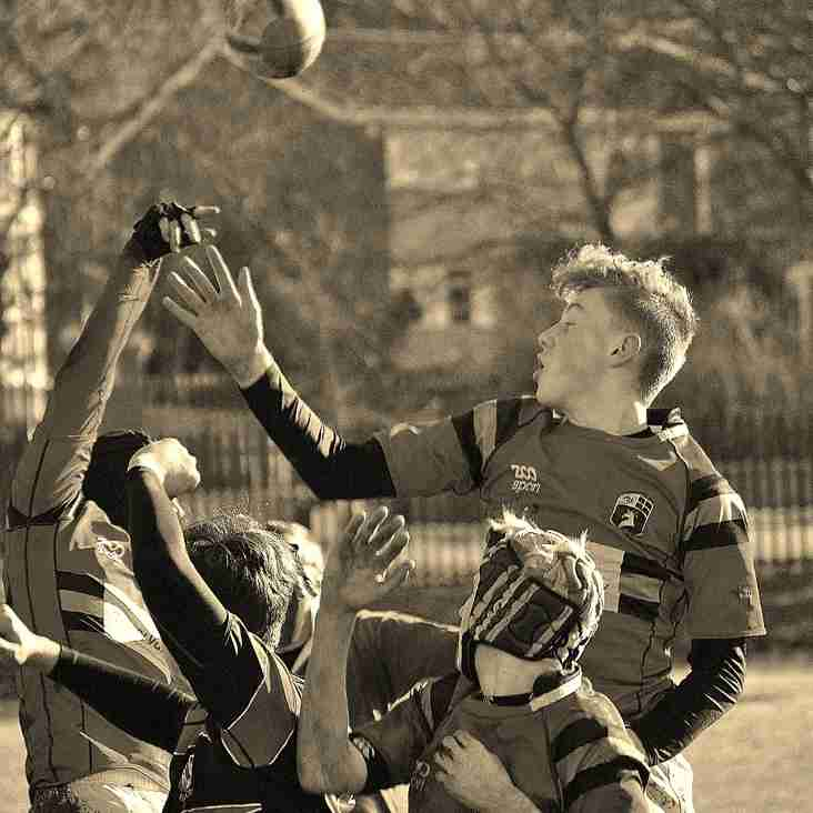 Age Grade Rugby Changes for 2016-17 season