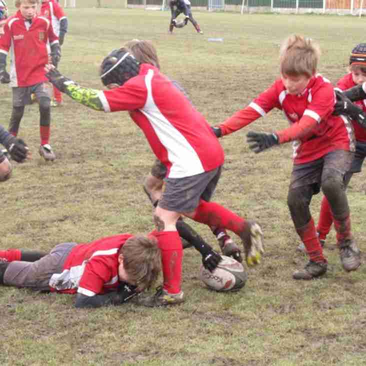 Rules of Engagement Under 11s