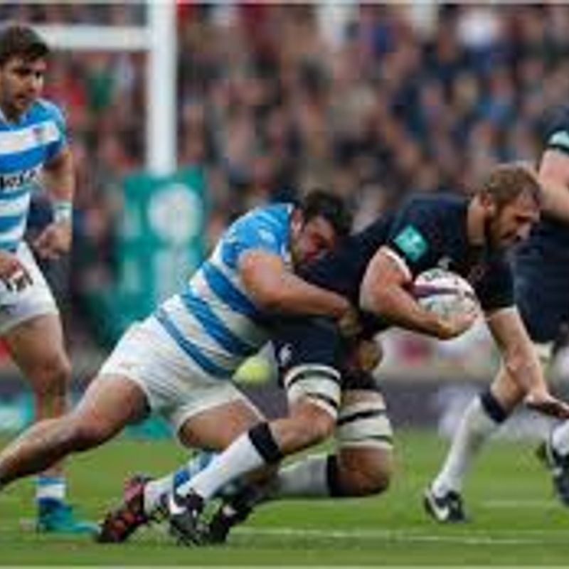Saturday 18th November - Watch the Autumn Internationals at the club