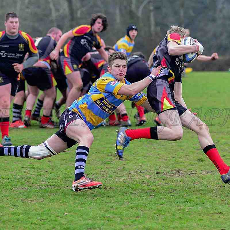 Chard RFC Colts v Wells 14-3-2015